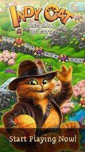 indy-cat2