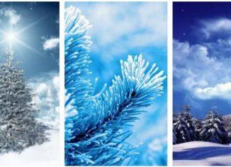 Zimowe Tapety