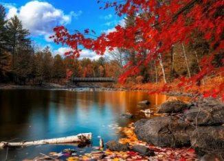 Tapety Jesień